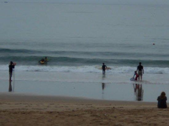 Jeffreys Bay, جنوب أفريقيا: Swimmers & Surfers