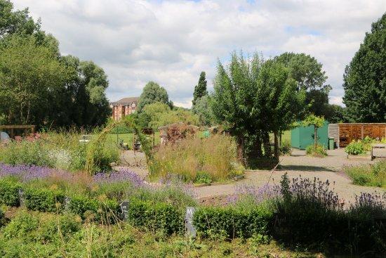 Grozone Community Garden
