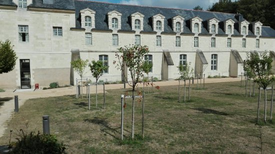 Fontevraud-l'Abbaye, Frankrig: IMG_20160918_150954_large.jpg