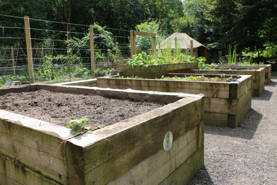 Grozone Community Garden (Northwich) - 2020 All You Need ...