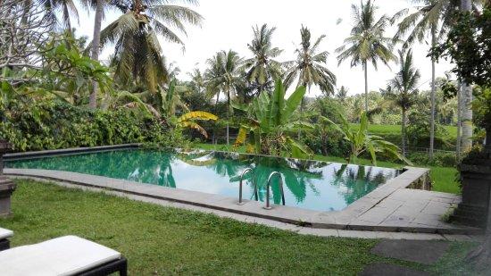 sentiero verso la camera picture of ananda cottages ubud rh tripadvisor co uk ananda cottages ubud contact ananda cottages ubud yoga