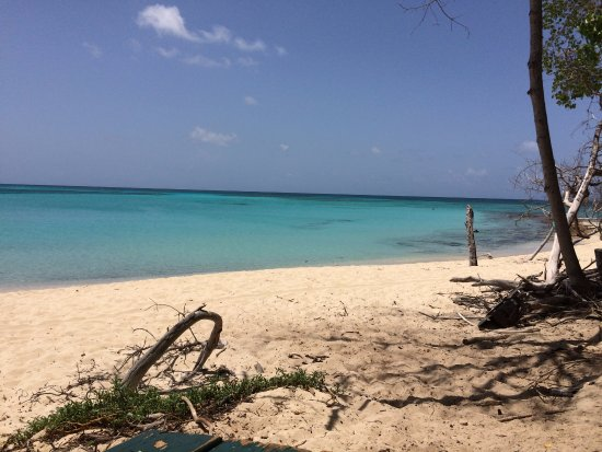 Christiansted, St. Croix: From the beach at Buck Island