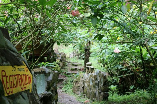 Provincia de Chiriquí, Panamá: Lost and Found Ecohostel