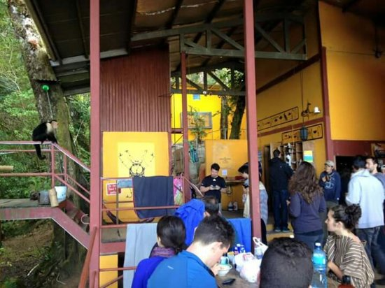 Provinsen Chiriqui, Panama: Lost and Found Ecohostel