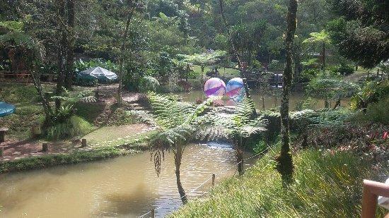 West Java, Indonesien: photo1.jpg