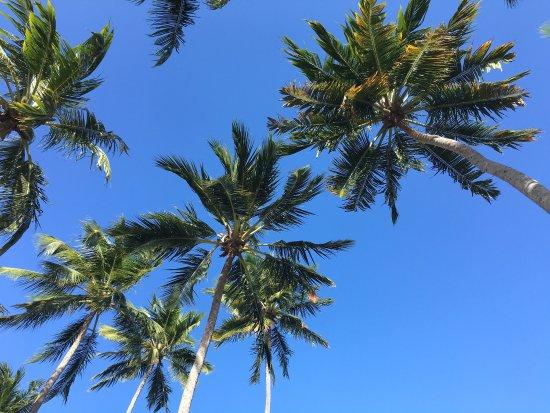 Patacho Beach: photo3.jpg