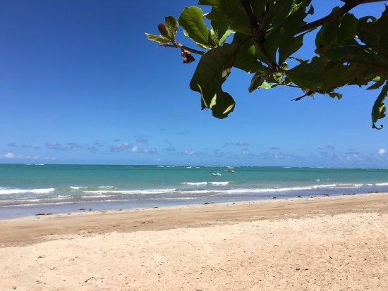 Patacho Beach: photo6.jpg