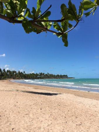 Patacho Beach: photo7.jpg