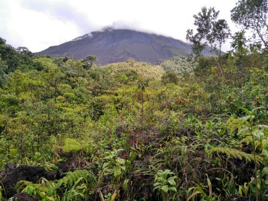Arenal Volcano (Volcan Arenal): IMG_20160913_085725_large.jpg
