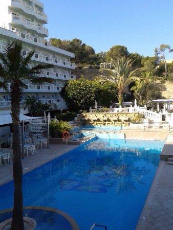 green parrots of santa ponsa picture of bahia del sol On bahia del sol hotel