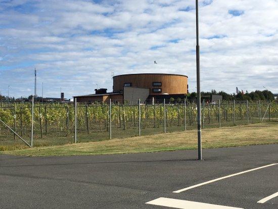 Simrishamn, สวีเดน: Underbart vin ställe ned god mat o fin vinprovning.