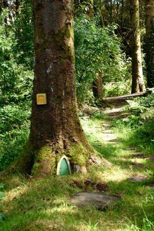 Millstreet, Irlanda: Highrise Fairy Houme