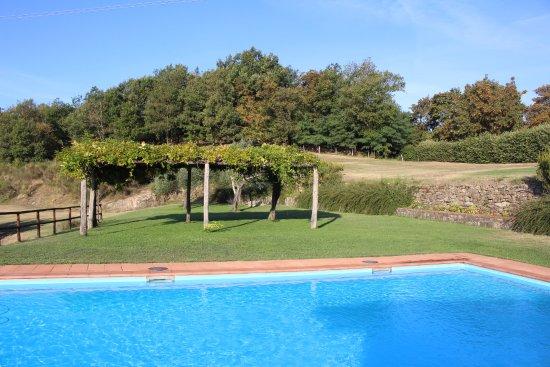 Azienda Agrituristica Costa d'Orsola: Rustige tuin met zwembad