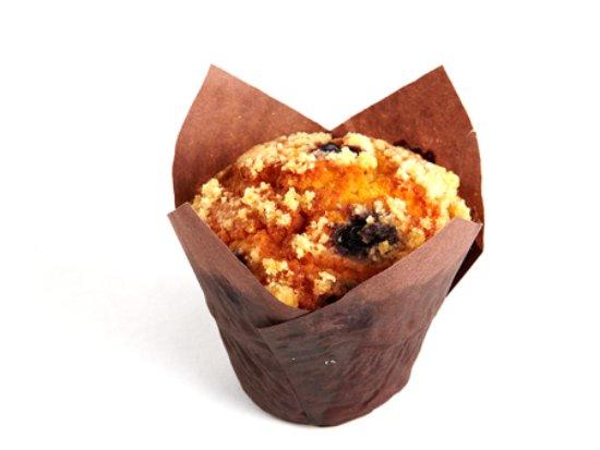 Media, เพนซิลเวเนีย: LeBus Blueberry Muffin
