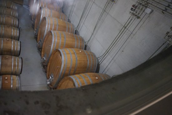 Mackovci, Словения: State of the art wine producing.