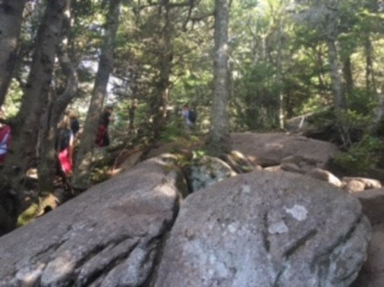 Adirondack, estado de Nueva York: You get an idea of just how steep this can be, some points you must go on hands and knees
