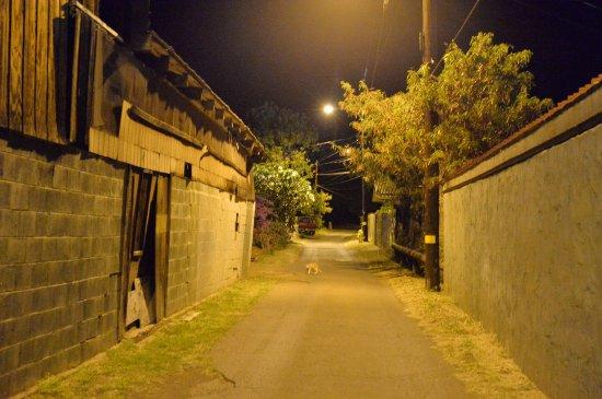 Kaunakakai, HI: 夜はこのぐらいの暗さ。真っ暗ではないです。
