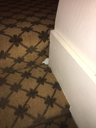 Westgate Vacation Villas Resort & Spa: Hole in the stairs the rat used to enter toom