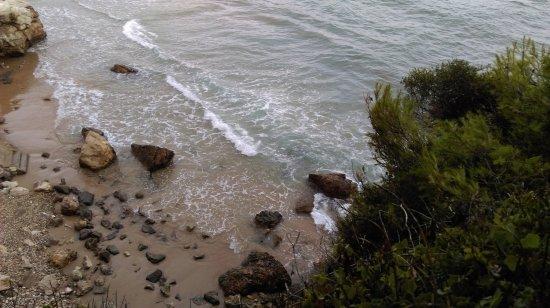 Ocean Floor Kisses