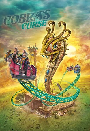 Busch gardens tampa all you need to know before you go - Busch gardens tampa bay cobra s curse ...