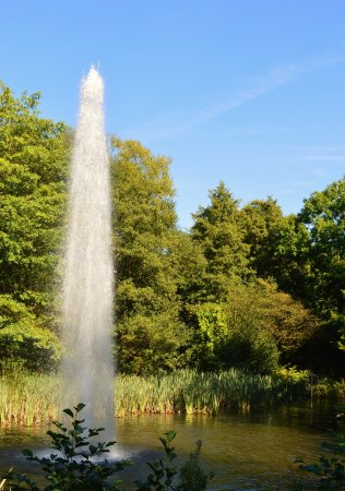 Bohme Familienpark: Fountain in the park