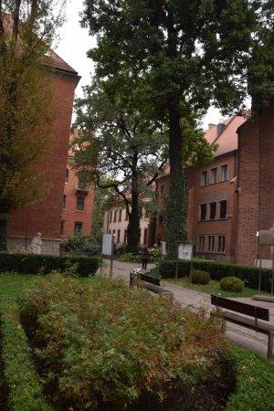 Jagiellonian University - Collegium Maius: photo2.jpg
