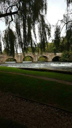 Bickleigh, UK: IMG_20160915_182322_large.jpg