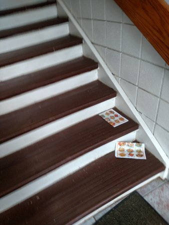 Piscataway, NJ: filthy smelly stairwell - papers are one thing, but the smell and dirt - gross