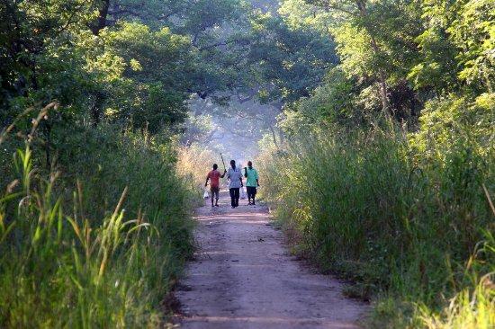 Salima, Malawi: 2016-04-23 08-12_large.jpg