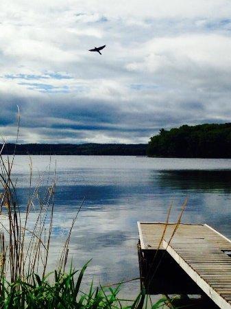 Elmhirst's Resort: Each cottage has a dock