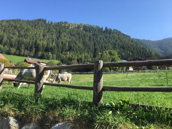 Luson (Lüsen), Italien: photo0.jpg