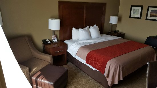 King room is awesome Nicely decorated and quiet Under $100 for