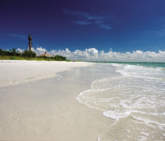 Beach Island: Featured Images Of Sanibel Island