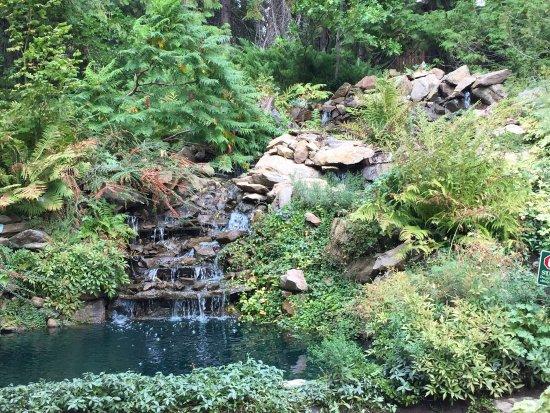 Ohme Gardens: photo0.jpg