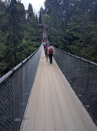 North Vancouver, Canada: Walking on the bridge