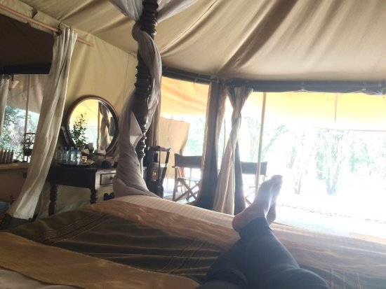 Mara Ngenche Safari Camp: photo0.jpg