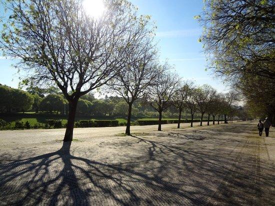 Parque Eduardo VII: Vista maravilhosa