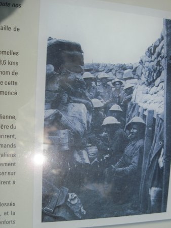 Musee de la Bataille de Fromelles : Only 3 of these Canadians survived the attack-what a waste