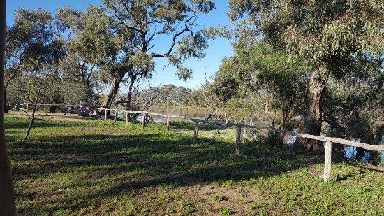 Cunnamulla, Australien: 20160919_075328_large.jpg