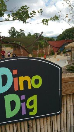 Riverbanks Zoo and Botanical Garden: 20160918_154429_large.jpg