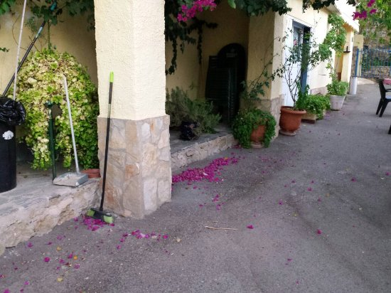 Hostal La Parata: 20160918_074840_large.jpg