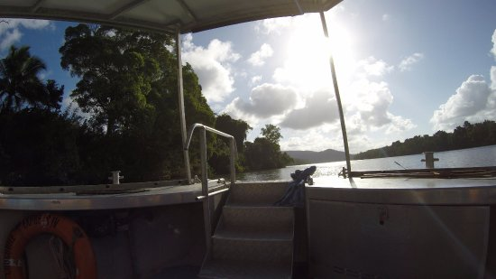 Cairns Region, Australia: Daintree River Cruise