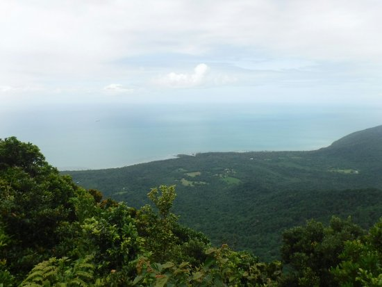 ‪‪Cape Tribulation‬, أستراليا: View from Mount Sorrow‬