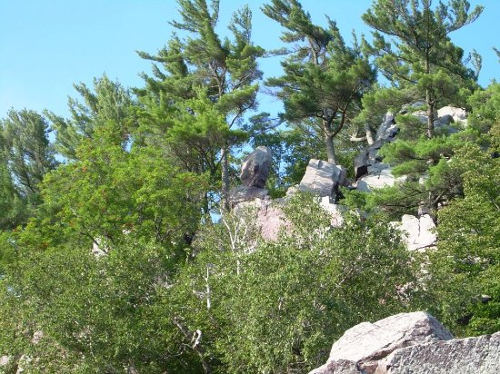Baraboo, WI: Balanced rock in distance