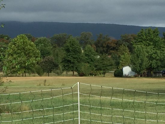 Hedgesville, Virginia Occidental: view from our site