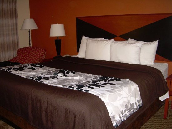 Sleep Inn & Suites Madison: King Bed