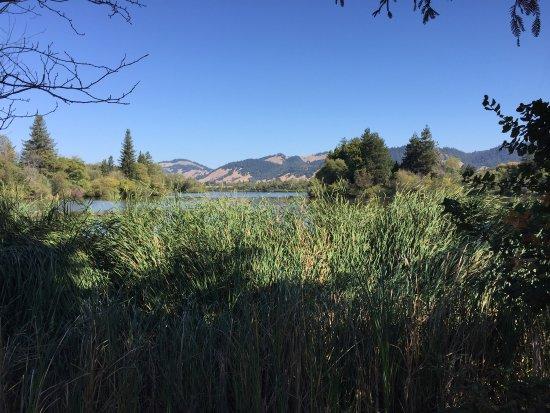 Spring Lake Park: Nice views