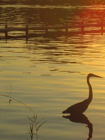 Three Rivers, MI: Sunset at Fishers Lake Inn