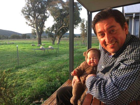 Mudgee, Australia: My partner, baby and the Short Sheep