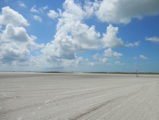 ثندربيرد بيتش ريزورت: wide beach, takes about 5 min. to walk to the ocean.